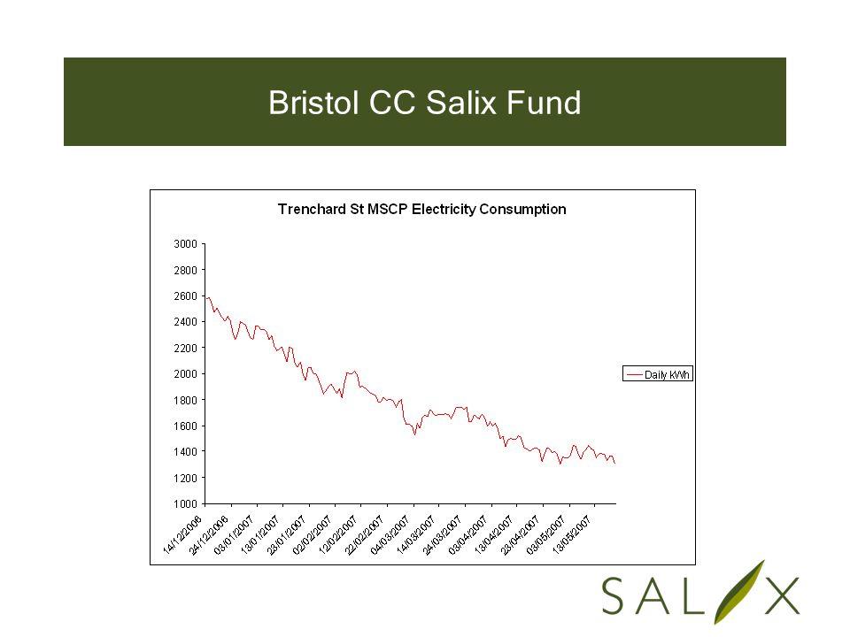 Bristol CC Salix Fund