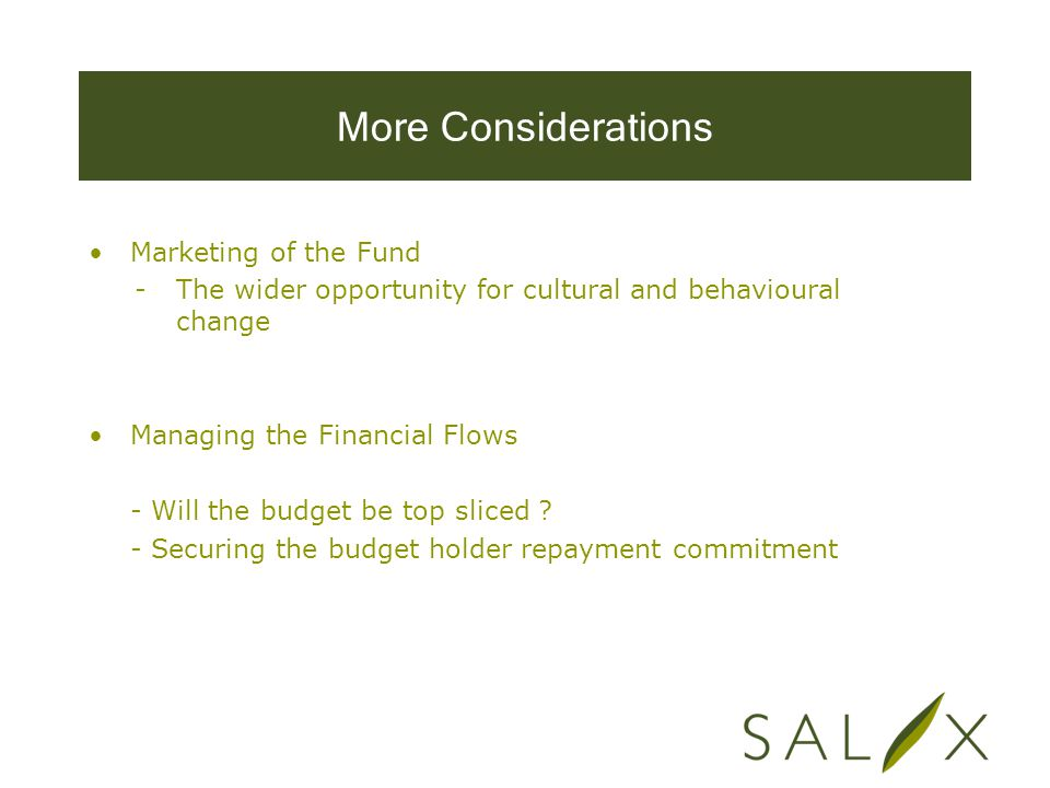 More Considerations Marketing of the Fund -The wider opportunity for cultural and behavioural change Managing the Financial Flows - Will the budget be top sliced .