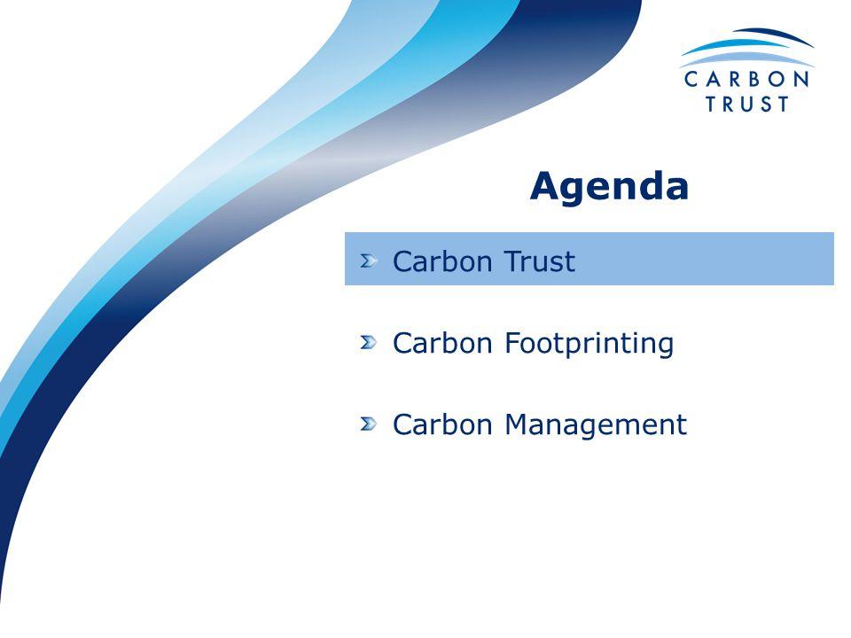 Carbon Trust Carbon Footprinting Carbon Management Agenda