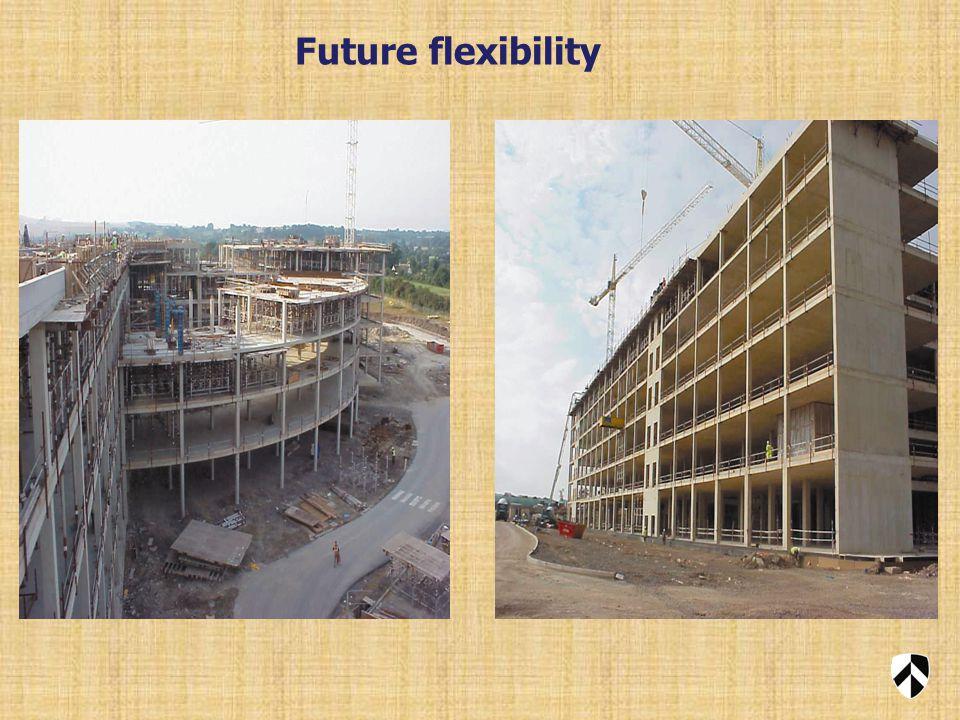 Future flexibility