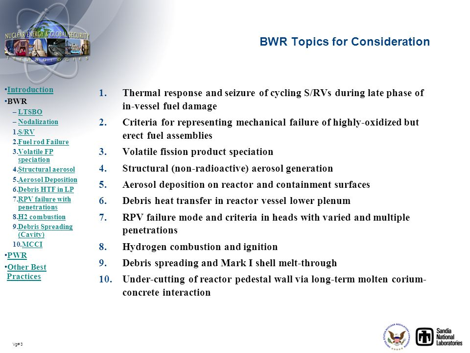 Vg# 3 BWR Topics for Consideration 1.Thermal response and seizure of cycling S/RVs during late phase of in-vessel fuel damage 2.Criteria for represent