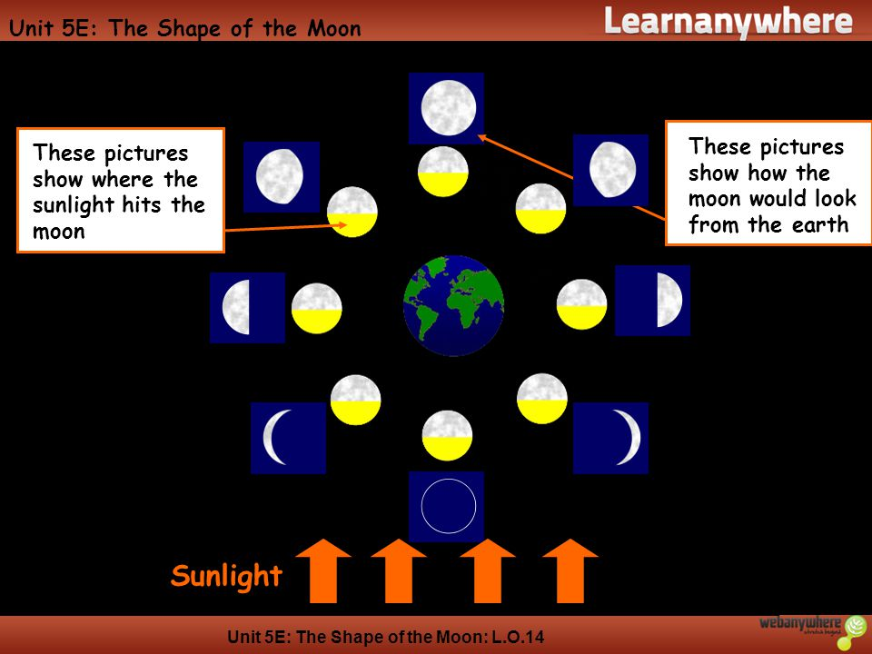 Unit 5E: The Shape of the Moon: L.O.14 Unit 5E: The Shape of the Moon Sunlight These pictures show how the moon would look from the earth These pictures show where the sunlight hits the moon