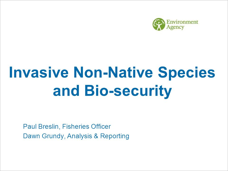 Invasive Non-Native Species and Bio-security Paul Breslin, Fisheries Officer Dawn Grundy, Analysis & Reporting