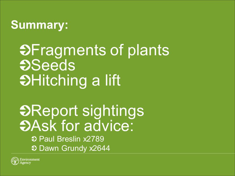 Summary: Fragments of plants Seeds Hitching a lift Report sightings Ask for advice: Paul Breslin x2789 Dawn Grundy x2644