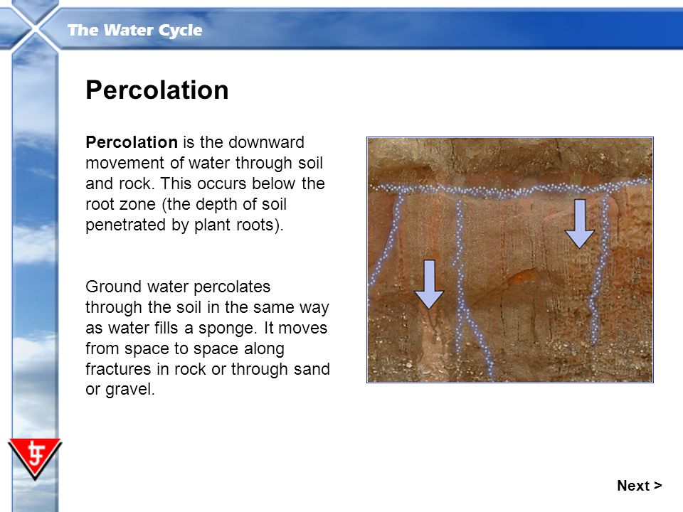 The Water Cycle Percolation Percolation is the downward movement of water through soil and rock. This occurs below the root zone (the depth of soil pe