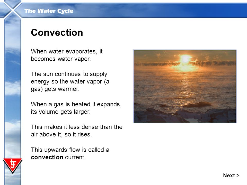 The Water Cycle Next > Convection When water evaporates, it becomes water vapor. When a gas is heated it expands, its volume gets larger. The sun cont