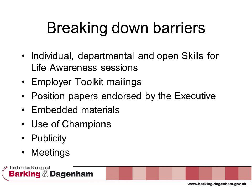 Breaking down barriers Individual, departmental and open Skills for Life Awareness sessions Employer Toolkit mailings Position papers endorsed by the Executive Embedded materials Use of Champions Publicity Meetings