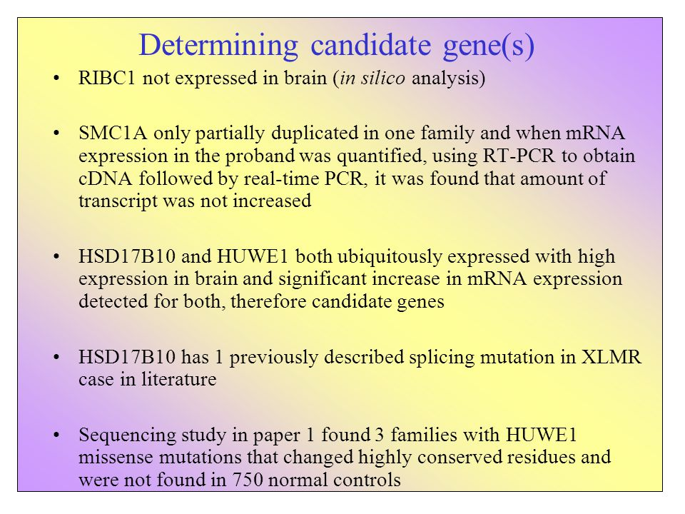 Determining candidate gene(s) RIBC1 not expressed in brain (in silico analysis) SMC1A only partially duplicated in one family and when mRNA expression