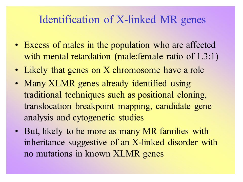 Excess of males in the population who are affected with mental retardation (male:female ratio of 1.3:1) Likely that genes on X chromosome have a role