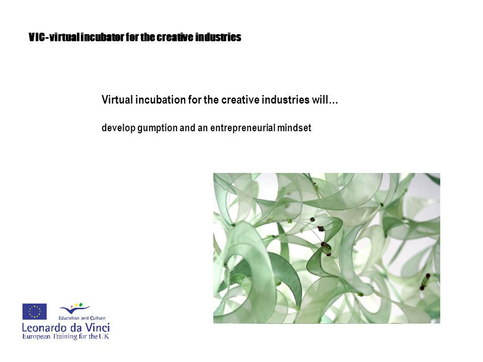 VIC- virtual incubator for the creative industries Virtual incubation for the creative industries will… provide cost effective business training without the need for expensive premises