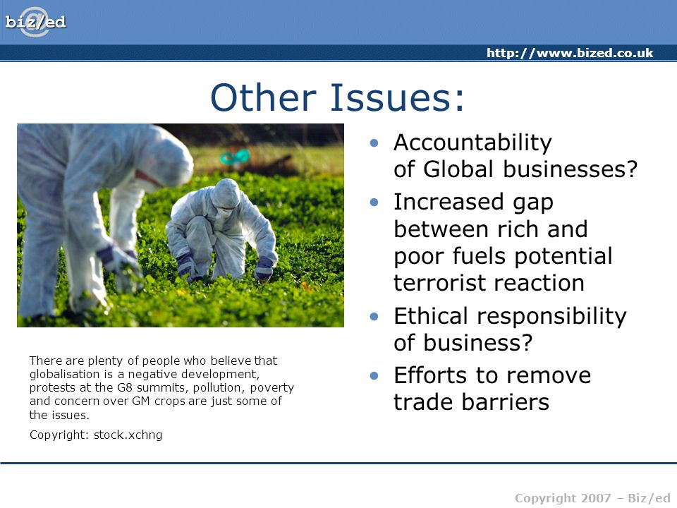 http://www.bized.co.uk Copyright 2007 – Biz/ed Other Issues: Accountability of Global businesses? Increased gap between rich and poor fuels potential