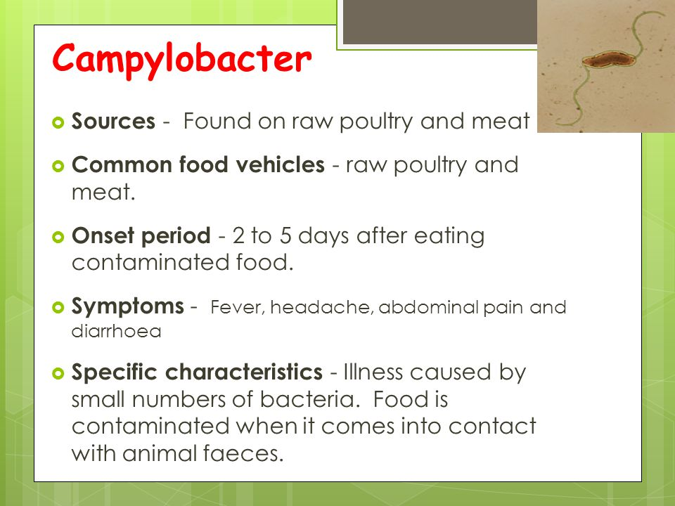 Campylobacter  Sources - Found on raw poultry and meat  Common food vehicles - raw poultry and meat.