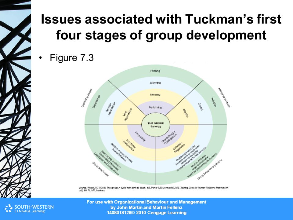 For use with Organizational Behaviour and Management by John Martin and Martin Fellenz 1408018128© 2010 Cengage Learning Issues associated with Tuckma