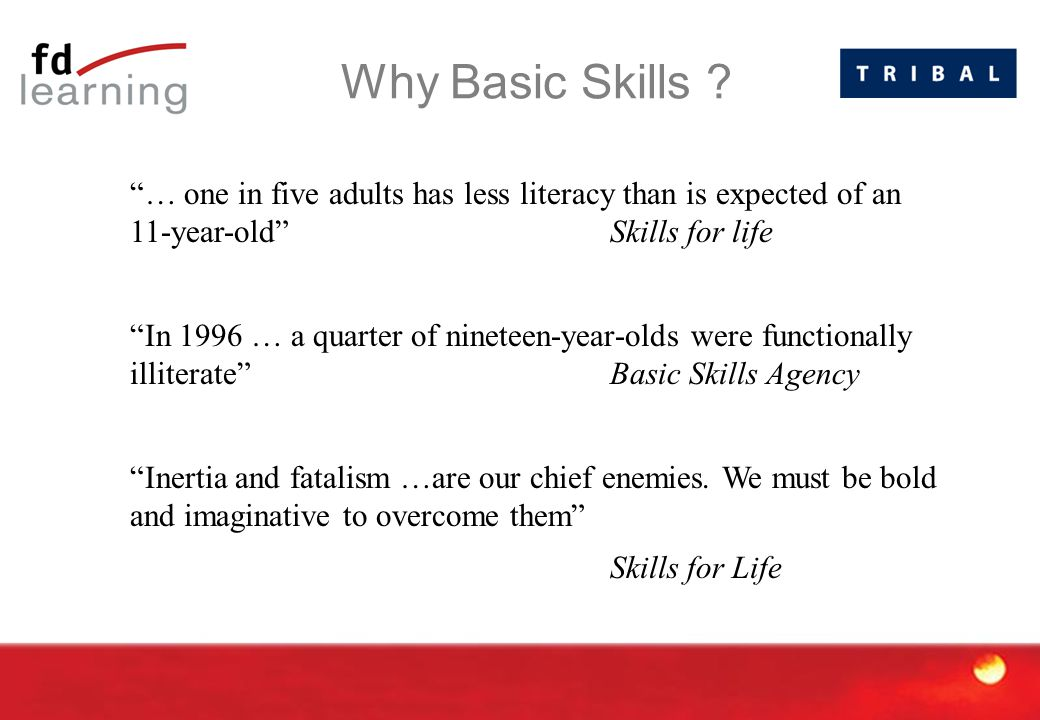 """Why Basic Skills ? """"… one in five adults has less literacy than is expected of an 11-year-old"""" Skills for life """"In 1996 … a quarter of nineteen-year-o"""