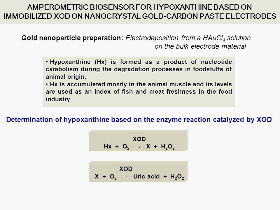 LOD at 0.00 V: 2.2x10 -7 mol L -1 K m app = 18x10 -6 mol L -1 Useful lifetime = at least 15 days SEM of a GA-BSA-XOD-nAu-CPE biosensor Determination of hypoxanthine in sardines and chicken meat using the GA-BSA-XOD-nAu- CPE biosensor Sample Non-spiked1 2 3 Spiked1 3 2 Sardines Added (mg/100g)Found (mg/100g) Recovery (%) Chicken Added (mg/100g)Found (mg/100g) Recovery (%) - 145- - 138- - 152- - 225105 69.6 213103 - 210 95 - 91.7- - 85.0- - 94.7- - 157.2103 60.7 145.1 99 - 160.2103 Mean recoveries (  = 0.05):101 ± 8 % sardines102±3% chicken meat Sens.