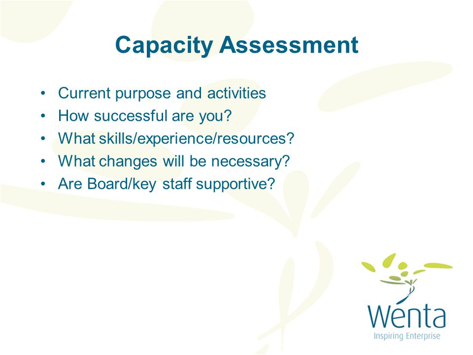Capacity Assessment Current purpose and activities How successful are you.