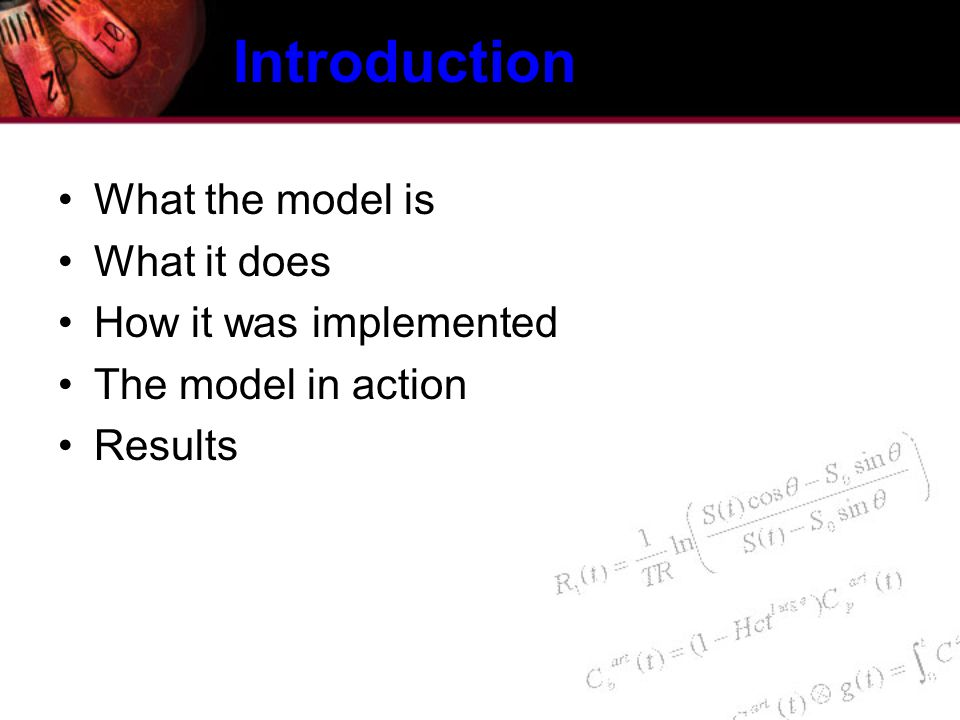 Introduction What the model is What it does How it was implemented The model in action Results