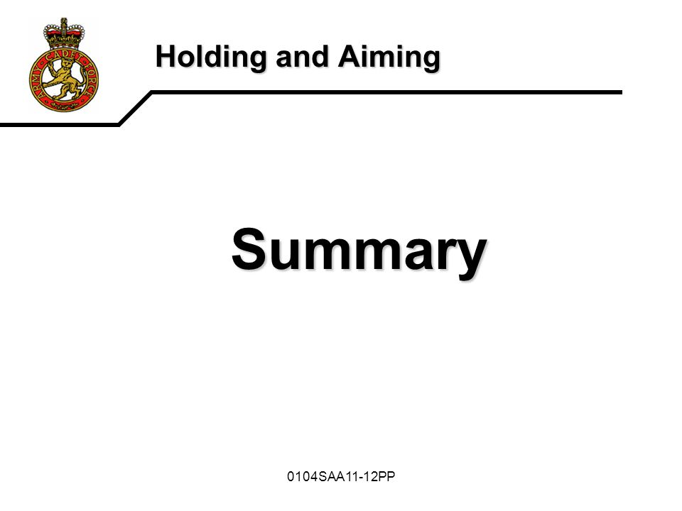 0104SAA11-12PP Holding and Aiming Summary