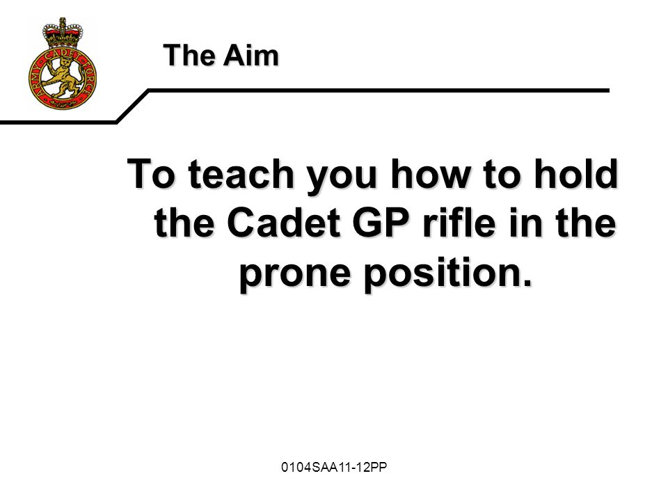 0104SAA11-12PP The Aim Picture