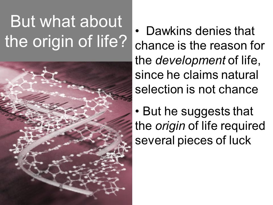 But what about the origin of life? Dawkins denies that chance is the reason for the development of life, since he claims natural selection is not chan