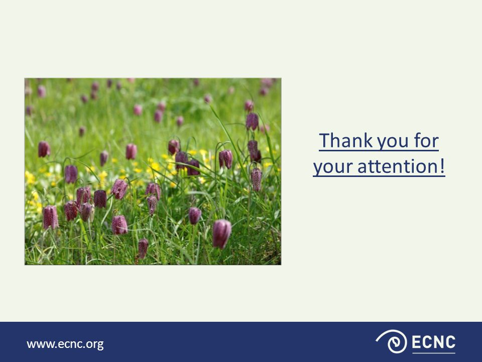 www.ecnc.org Thank you for your attention!