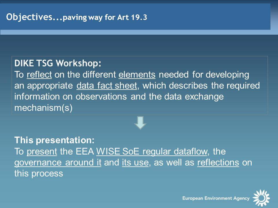 Objectives... paving way for Art 19.3 DIKE TSG Workshop: To reflect on the different elements needed for developing an appropriate data fact sheet, wh