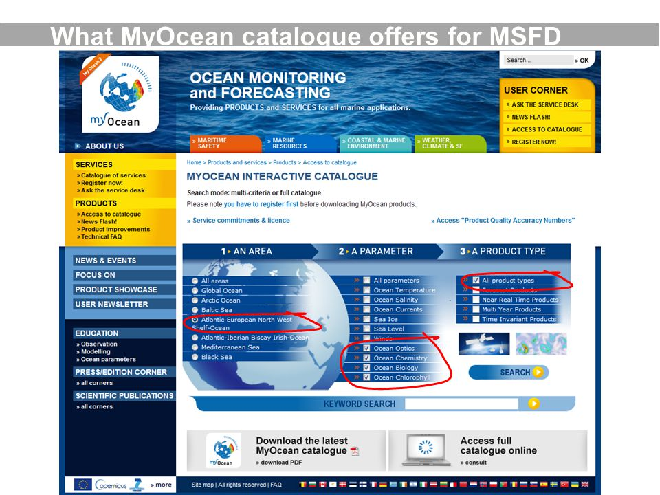 What MyOcean catalogue offers for MSFD