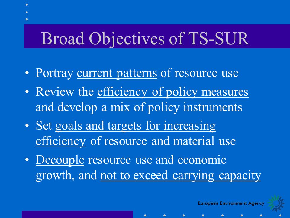 Broad Objectives of TS-SUR Portray current patterns of resource use Review the efficiency of policy measures and develop a mix of policy instruments Set goals and targets for increasing efficiency of resource and material use Decouple resource use and economic growth, and not to exceed carrying capacity