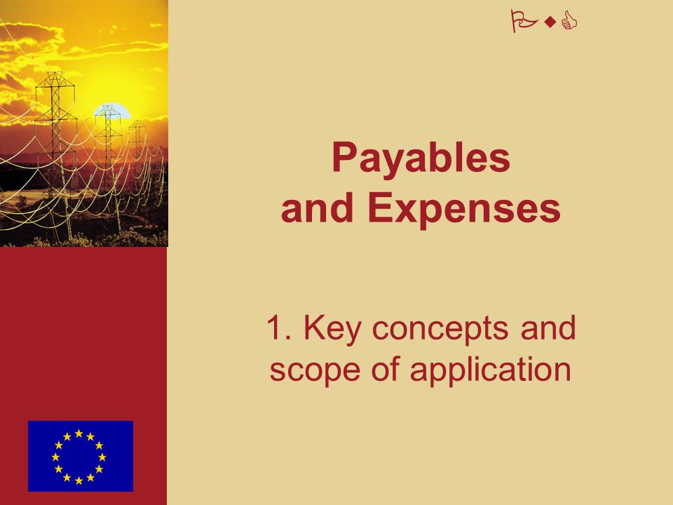 PwC Payables and Expenses 1. Key concepts and scope of application