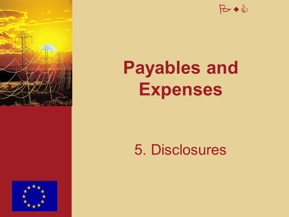 PwC Payables and Expenses 5. Disclosures