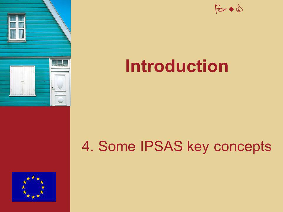 PwC Introduction 4. Some IPSAS key concepts