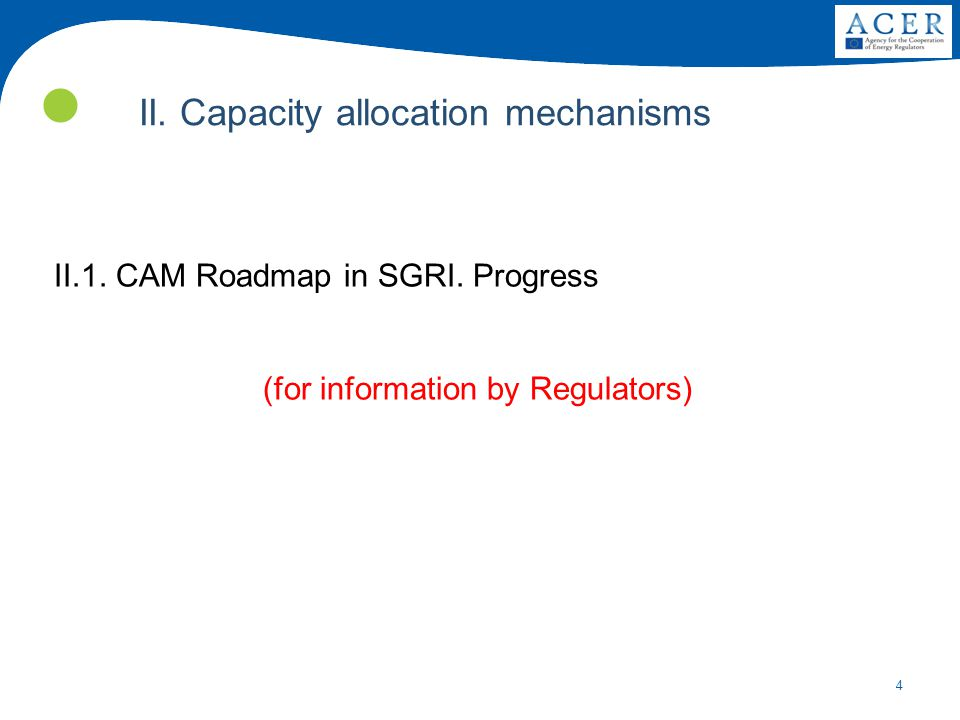 4 II.1.CAM Roadmap in SGRI. Progress (for information by Regulators) II.