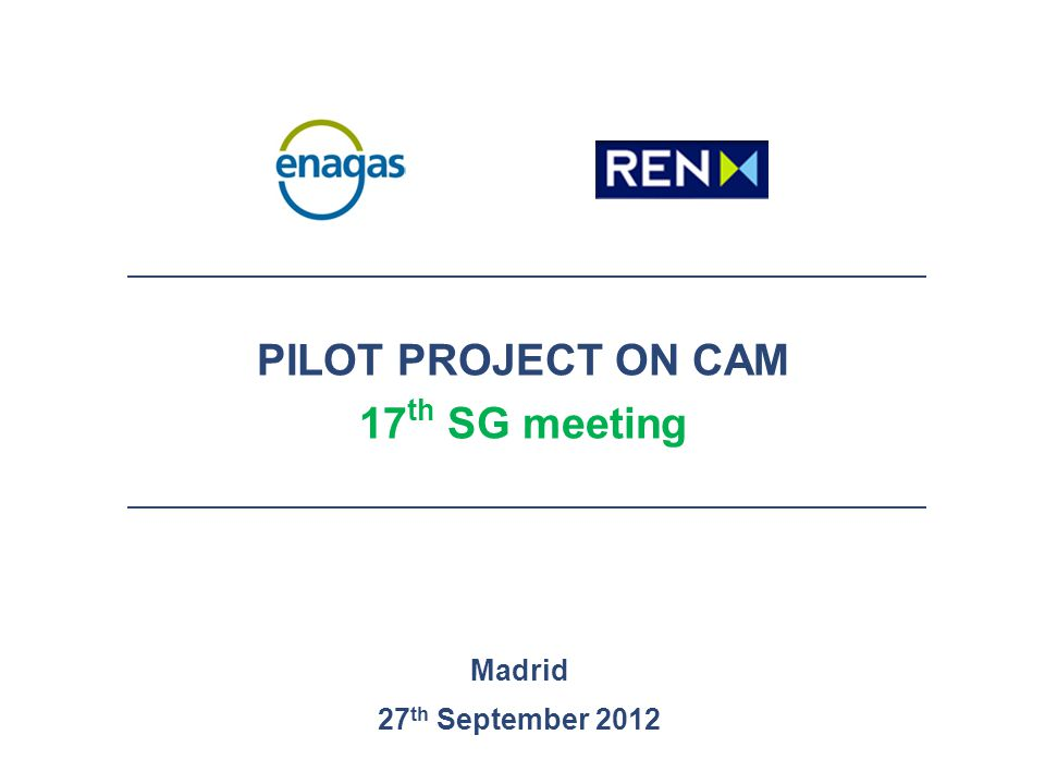 PILOT PROJECT ON CAM 17 th SG meeting Madrid 27 th September 2012