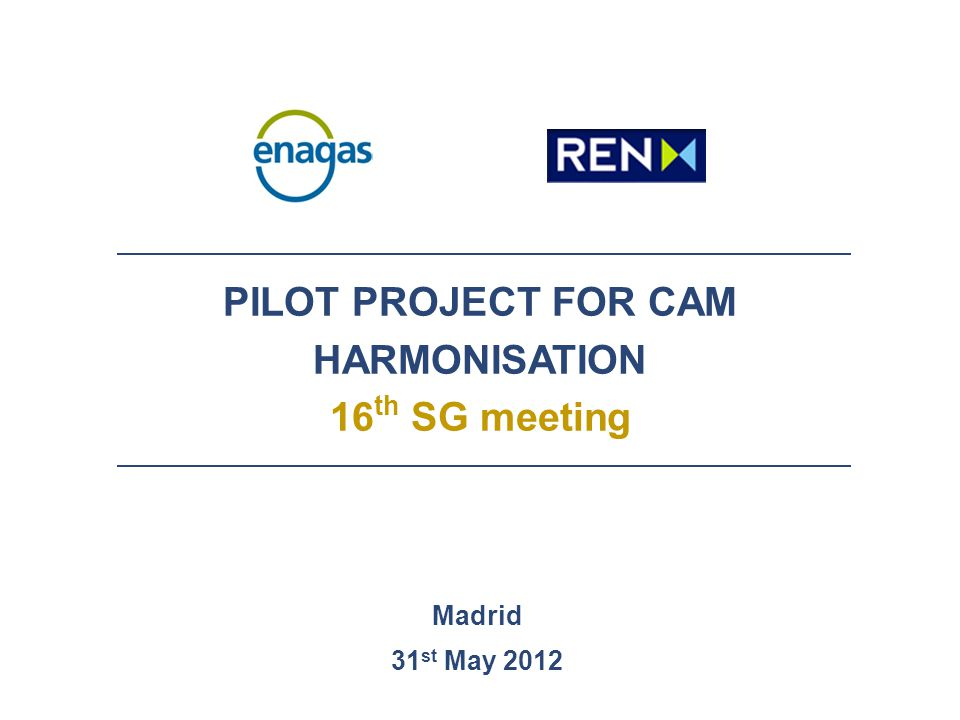 PILOT PROJECT FOR CAM HARMONISATION 16 th SG meeting Madrid 31 st May 2012