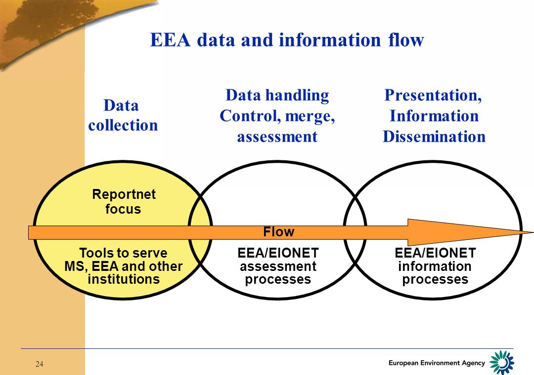 24 EEA data and information flow Data collection Data handling Control, merge, assessment Presentation, Information Dissemination Flow Reportnet focus