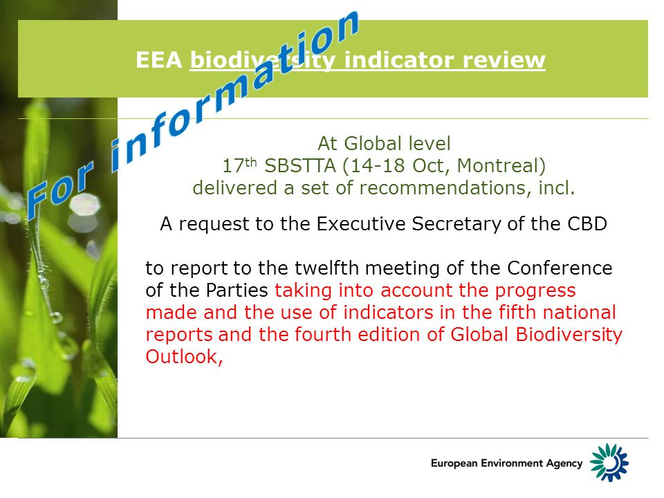 EEA biodiversity indicator review At Global level 17 th SBSTTA (14-18 Oct, Montreal) delivered a set of recommendations, incl.