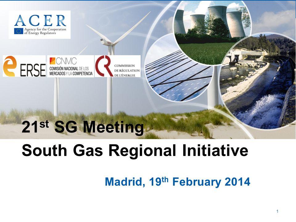 1 Madrid, 19 th February 2014 21 st SG Meeting South Gas Regional Initiative