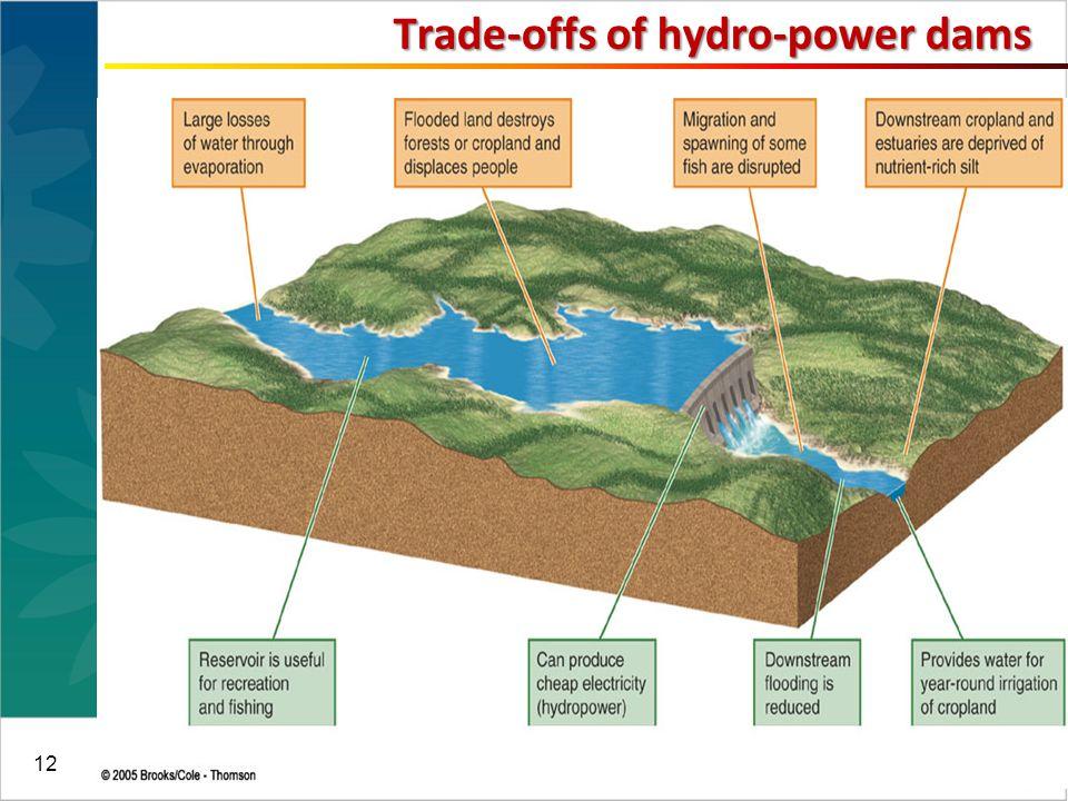 12 Trade-offs of hydro-power dams