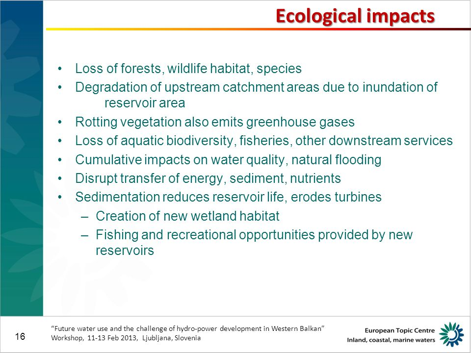 16 Loss of forests, wildlife habitat, species Degradation of upstream catchment areas due to inundation of reservoir area Rotting vegetation also emits greenhouse gases Loss of aquatic biodiversity, fisheries, other downstream services Cumulative impacts on water quality, natural flooding Disrupt transfer of energy, sediment, nutrients Sedimentation reduces reservoir life, erodes turbines –Creation of new wetland habitat –Fishing and recreational opportunities provided by new reservoirs Future water use and the challenge of hydro-power development in Western Balkan Workshop, 11-13 Feb 2013, Ljubljana, Slovenia Ecological impacts