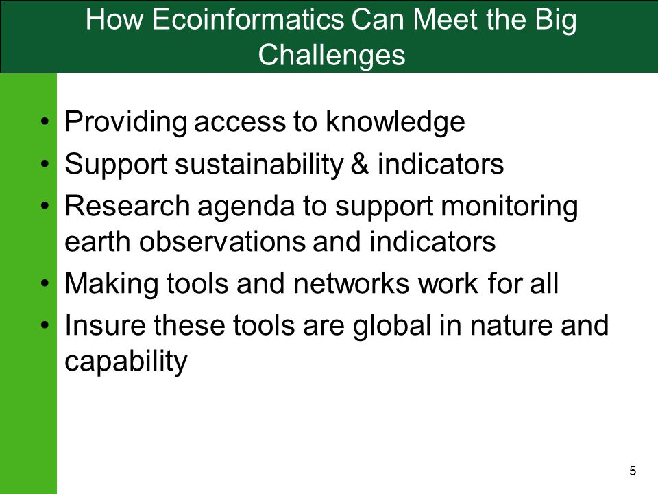 5 How Ecoinformatics Can Meet the Big Challenges Providing access to knowledge Support sustainability & indicators Research agenda to support monitoring earth observations and indicators Making tools and networks work for all Insure these tools are global in nature and capability