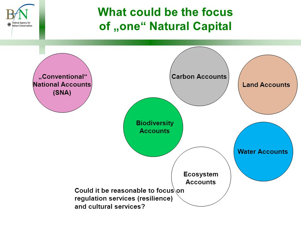"""What could be the focus of """"one Natural Capital Carbon Accounts Ecosystem Accounts """"Conventional National Accounts (SNA) Water AccountsLand Accounts Could it be reasonable to focus on regulation services (resilience) and cultural services."""
