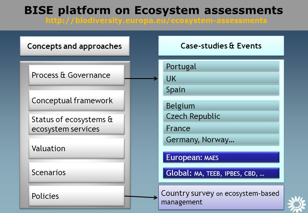 BISE platform on Ecosystem assessments   Belgium Spain Portugal UK European: MAES Global: MA, TEEB, IPBES, CBD, … Process & Governance Conceptual framework Status of ecosystems & ecosystem services Valuation Scenarios Policies Case-studies & Events Concepts and approaches Country survey on ecosystem-based management Czech Republic France Germany, Norway…