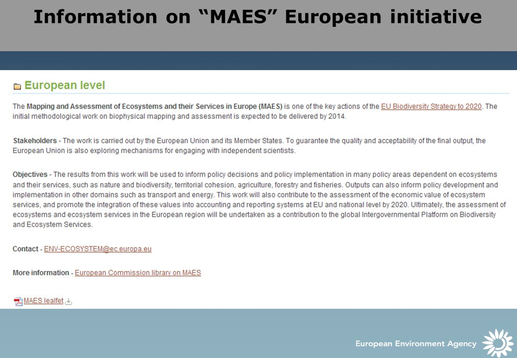 Information on MAES European initiative