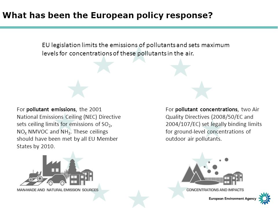 What has been the European policy response.