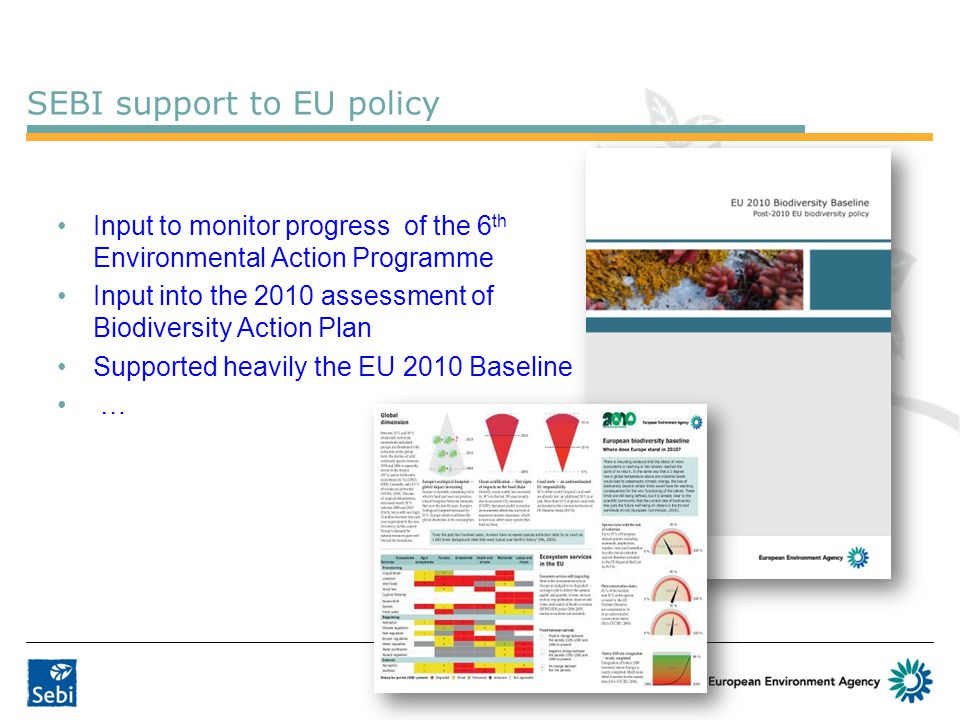 SEBI support to EU policy Input to monitor progress of the 6 th Environmental Action Programme Input into the 2010 assessment of Biodiversity Action Plan Supported heavily the EU 2010 Baseline …