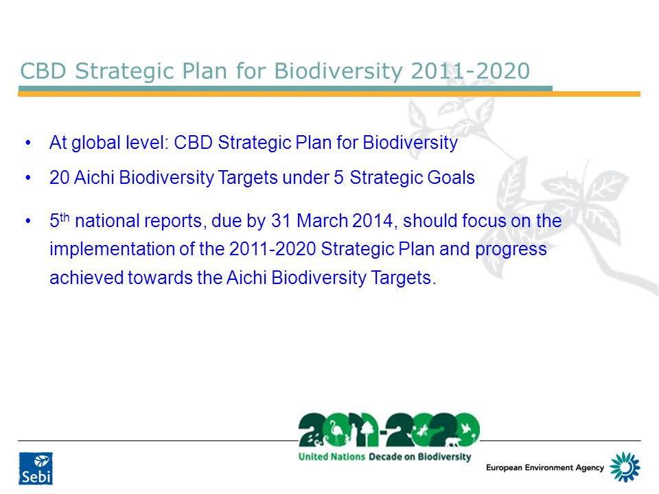 At global level: CBD Strategic Plan for Biodiversity 20 Aichi Biodiversity Targets under 5 Strategic Goals 5 th national reports, due by 31 March 2014