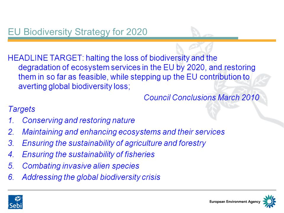 EU Biodiversity Strategy for 2020 HEADLINE TARGET: halting the loss of biodiversity and the degradation of ecosystem services in the EU by 2020, and restoring them in so far as feasible, while stepping up the EU contribution to averting global biodiversity loss; Council Conclusions March 2010 Targets 1.Conserving and restoring nature 2.Maintaining and enhancing ecosystems and their services 3.Ensuring the sustainability of agriculture and forestry 4.Ensuring the sustainability of fisheries 5.Combating invasive alien species 6.Addressing the global biodiversity crisis