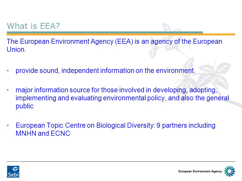 What is EEA.The European Environment Agency (EEA) is an agency of the European Union.