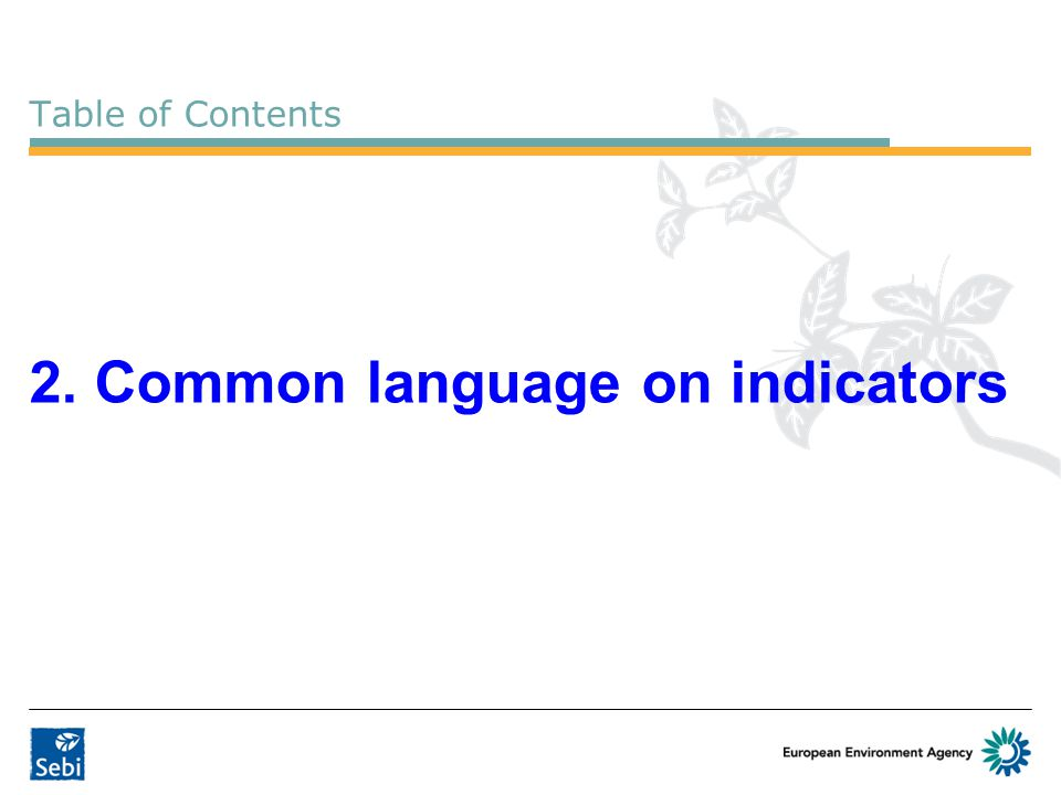 Table of Contents 2. Common language on indicators