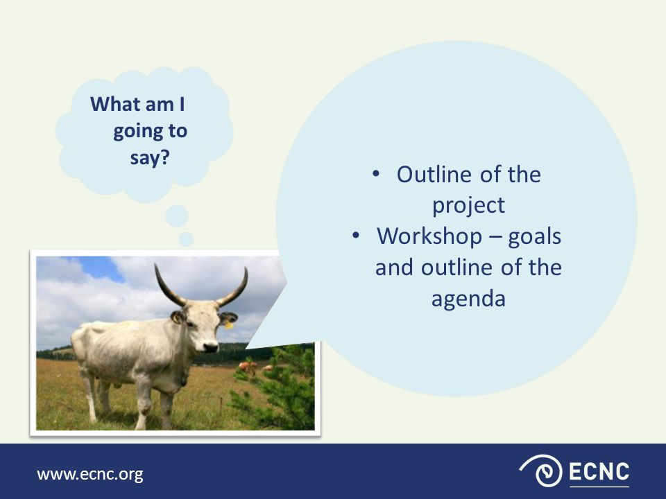 www.ecnc.org What am I going to say.